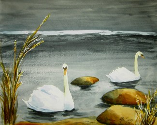 Winter Swans Watercolor Painting By Cape Ann Artist Kate Somers